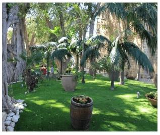 Berengaria's Garden